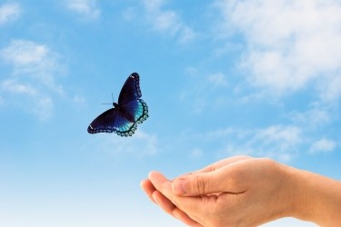 Откритост и истина във взаимоотношенията